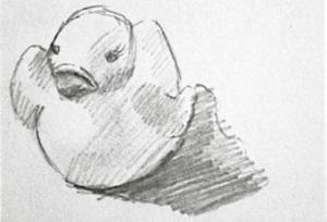 Ducky Sketch ©Rebecca Finch