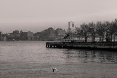 NYC'15-6